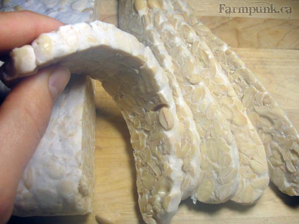 Farmpunk.ca: flexible tempeh