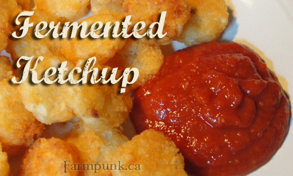 Homemade Fermented Ketchup