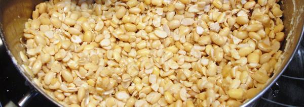 Farmpunk.ca: cooking soybeans for tempeh